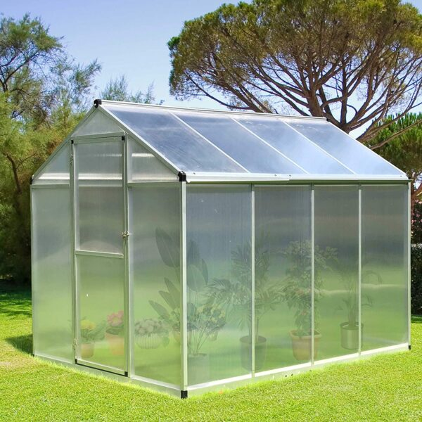 Green House 8 by 6 feet